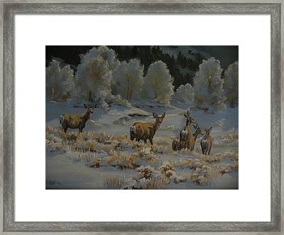 First Cold Snap Framed Print by Mia DeLode