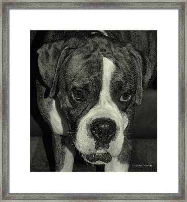 First Day Home Framed Print by DigiArt Diaries by Vicky B Fuller