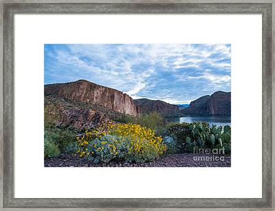 First Day Of Spring - Canyon Lake Framed Print by Leo Bounds