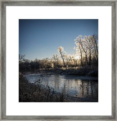 Framed Print featuring the photograph First Frost by Annette Berglund
