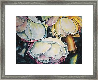 First Frost Roses Framed Print