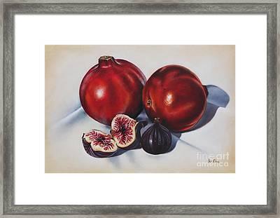 First Fruits II Framed Print
