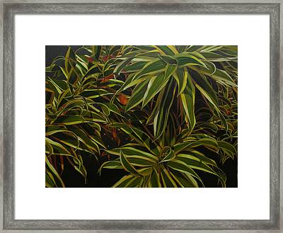 First In Cabot Framed Print by Thu Nguyen