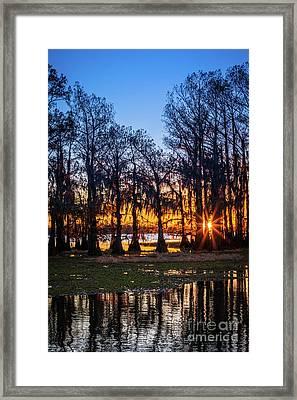 First Light At Caddo Lake Framed Print