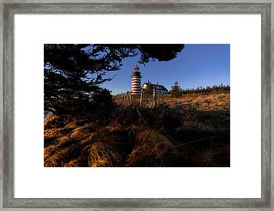 First Light At West Quoddy Head Lighthouse Framed Print by Marty Saccone