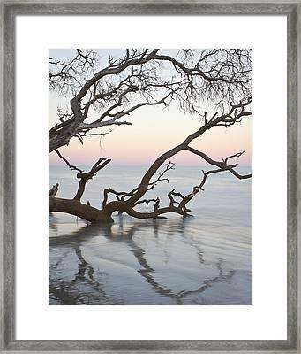 First Light - Hunting Island South Carolina Framed Print