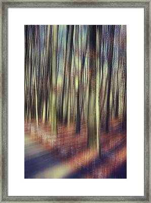 First Light Of Spring Framed Print