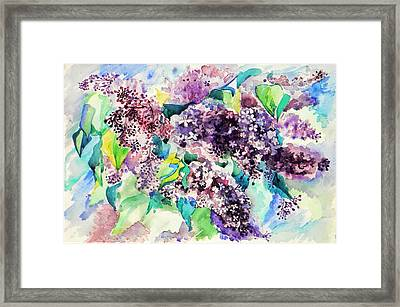 First Lilac. Framed Print by Anastasia Michaels