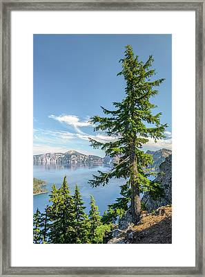 First Look Framed Print