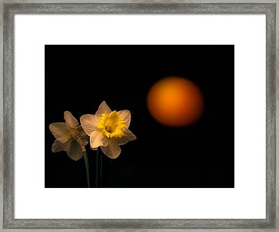First Look Framed Print by Don Spenner