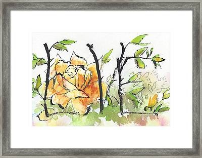 First Love 15 - Tangled Together Framed Print by Faith Teel