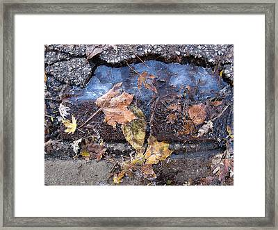 First Morning Of Ice In Fall 2  Framed Print by Lyle Crump
