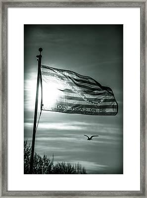 First Navy Jack Framed Print by Chris Bordeleau