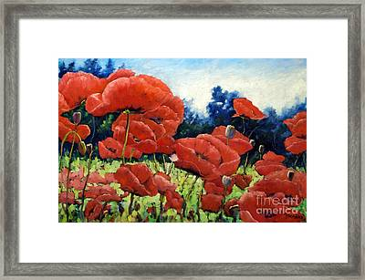 First Of Poppies Framed Print by Richard T Pranke