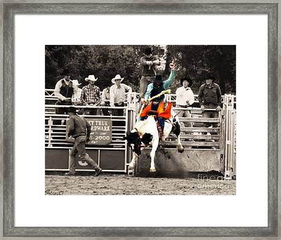 First Out Of The Chute Framed Print