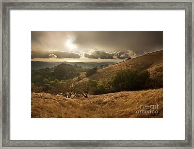 First Rain Framed Print by Matt Tilghman