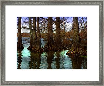 First Rays At Reelfoot Framed Print by Julie Dant