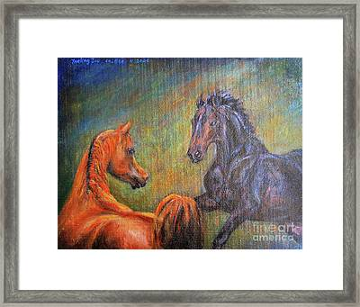 First Sight Framed Print by Xueling Zou