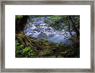 First Sign Of Fall Framed Print