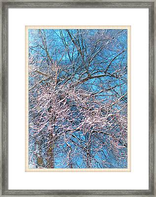 First Snow At Dawn Framed Print