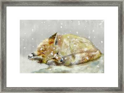 First Snow Framed Print by Crystal Hubbard