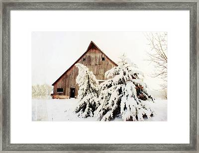 First Snowfall Framed Print by Julie Hamilton