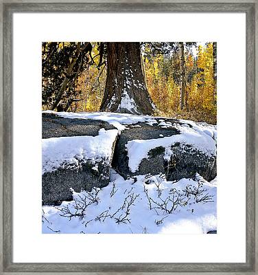 Framed Print featuring the photograph First Snow by Larry Darnell