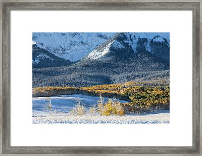 First Snow, Last Dollar Framed Print
