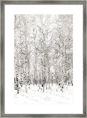Framed Print featuring the photograph First Snow by The Forests Edge Photography - Diane Sandoval