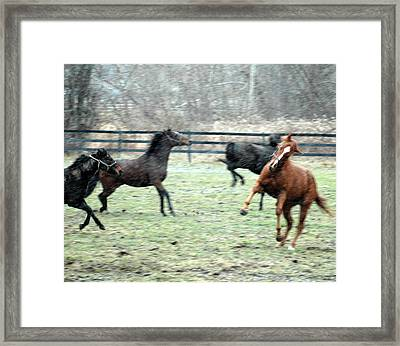 First Snow Framed Print by William A Lopez