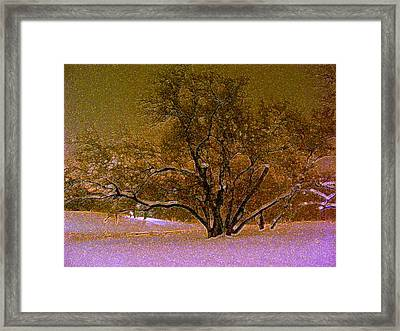 First Snowfall Framed Print by Sherwanda Irvin