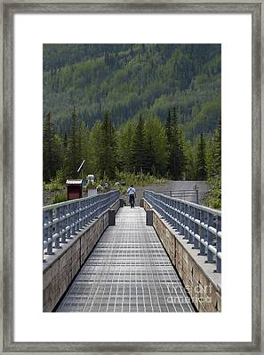 First Steps Down New Roads Framed Print by Denise McAllister