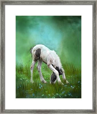 First Taste Framed Print by Carol Cavalaris