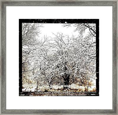 First Winter Snow Framed Print
