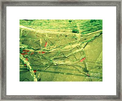 Framed Print featuring the photograph Fish Bowl  by Kristine Nora