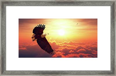 Fish Eagle Flying Above Clouds Framed Print