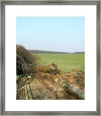 Fish-face Framed Print by Horace Cornflake