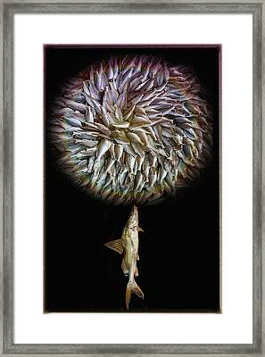 Fish Flower Framed Print by Nichon Thorstrom