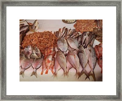 Fish For Sale In Market At Essaouira Framed Print by Panoramic Images