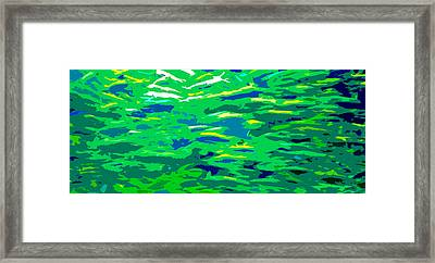 Fish In The Sea Framed Print by David Lee Thompson