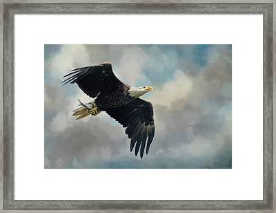 Fish In The Talons Framed Print