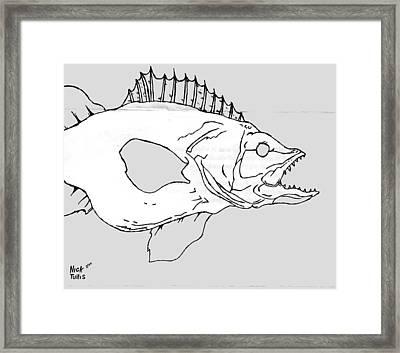 Fish Framed Print by Nicholas Tullis