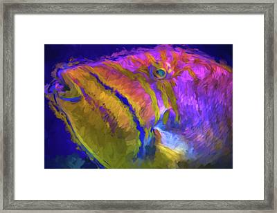 Framed Print featuring the photograph Fish Paint Dory Nemo by David Haskett