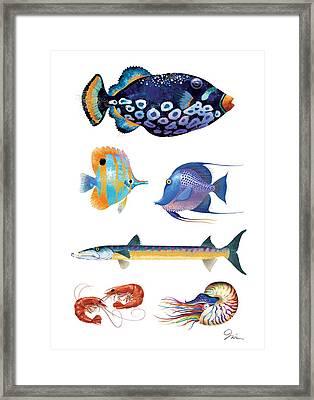 Fish Poster 001 Framed Print by Trevor Irvin