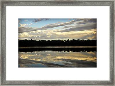Framed Print featuring the photograph Fish Ring by Chris Berry