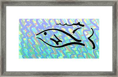 Fish Framed Print by Sam Shacked