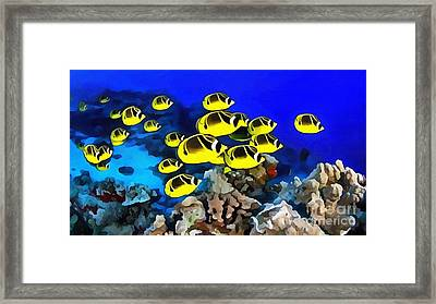 Fish School Framed Print