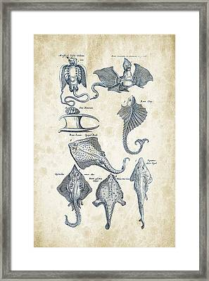 Fish Species Historiae Naturalis 08 - 1657 - 12 Framed Print by Aged Pixel