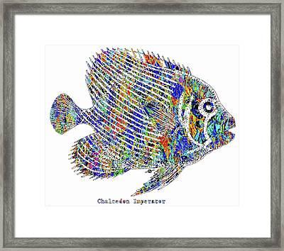 Fish Study 1 Framed Print