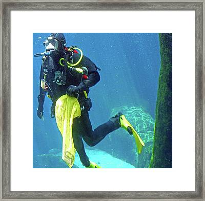 Fish Tank 16 Framed Print